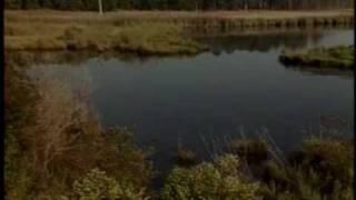 Blackwater Refuge Episode 02