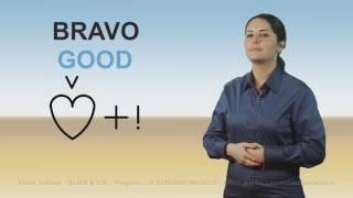 Tutte le Video Schede BLISS & LIS Progetto LO SCRIGNO MAGICO MIUR & www LeparolediLeonardo it
