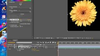 Video Aula em After Effects cs5 Efeito Morph