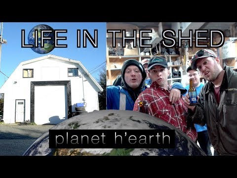 Planet Earth: Life In The Shed