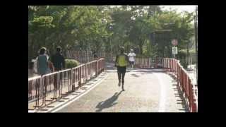 「第14回 赤坂チャレンジマラソン2012秋」の映像は、赤坂一ツ木通り商店...