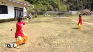 World TaiChi Qigon Day 2015 Narita Japan