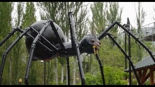 FairlyMad: The Biggest Spider You've NEVER Seen!