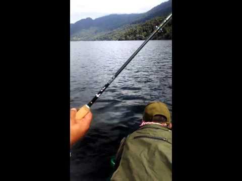 Pesca Lago Neltume