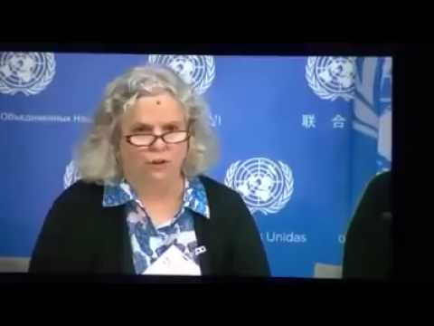 A lady in UN council reveals the reality of Syrian conflict.