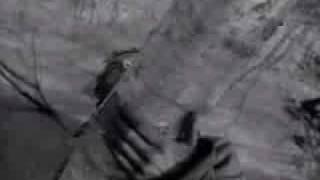 Песня из кф Летят журавли - Журавли