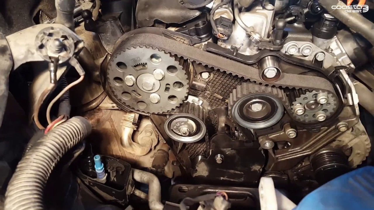 2006 Passat 2 0 Engine Diagram Automotive Wiring Fuses On A Vw Pasat B6 Tdi Timing Belt Replacement Inlocuire Curea Rh Youtube Com Cooling Fuse Box