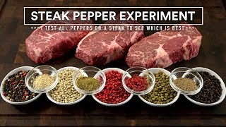 Which PEPPER is BEST for STEAKS? The STEAK PEPPER Experiment!