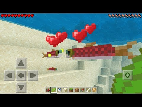 How To Breed Fish In Minecraft Pocket Edition