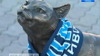 Талисман «Адмирала» кошка Матроска продолжает приносить удачу хоккейному клубу