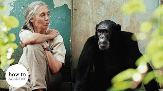 Dr Jane Goodall on Saving the Planet from Climate Change