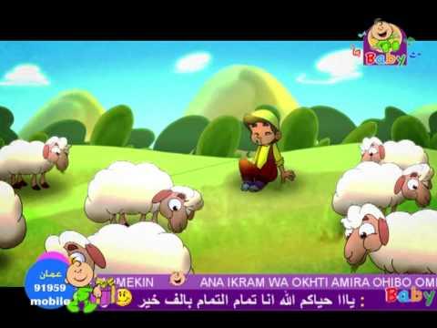 Toyor Jana طيور الجنة الراعي الكداب Youtube