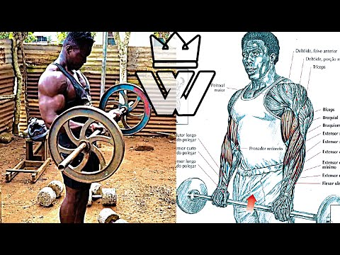 Bodybuilding FULL BODY Workout | African GYM