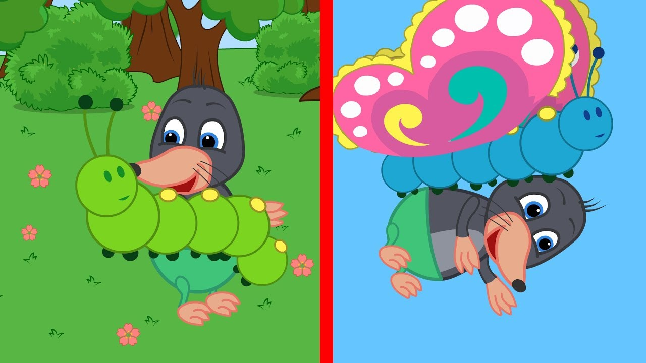 Benny Mole And Friends How A Caterpillar Becomes A Butterfly Cartoon For Kids Youtube