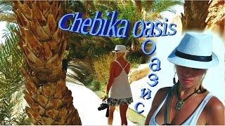 видео Тунис Archives