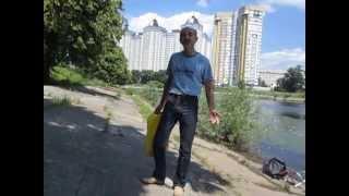 Липовый цвет, Сбор в Киеве, загрязнения - Pollutions and chemicals in Kyiv