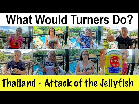 Thailand Family Travel - Phuket - Attack Of The Jellyfish - Tip: How To Quickly Treat Stings