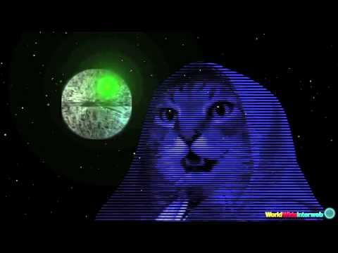 смотреть коты звездные войны