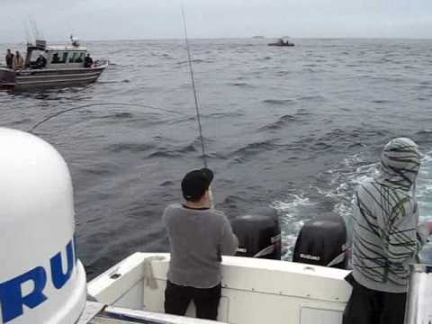 West Coast Vancouver Island Fishing Report