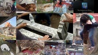 7 Fenomena Aneh Di Kuburan Indonesia yang Penuh Misteri