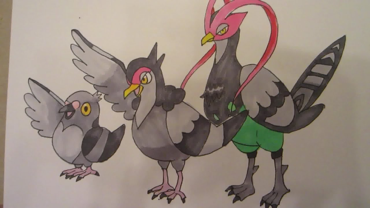 How to draw Pokemon: No.519 Pidove, No.520 Tranquill, No ...