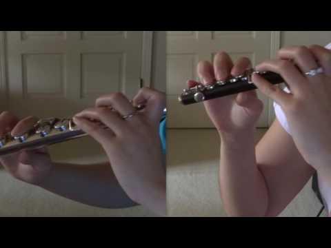 Love is an Open Door - Frozen [flute/piccolo cover]