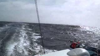 François Gabart sur Macif savoure la navigation dans les mers du Sud - Vendée Globe 2012