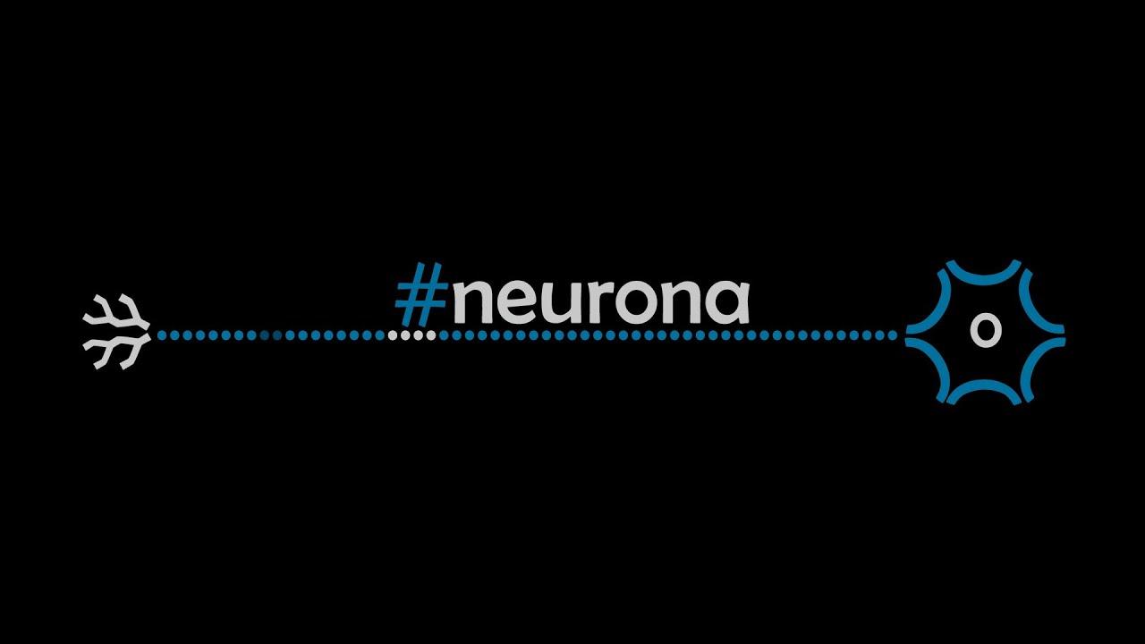cuál es la función del axón en una neurona