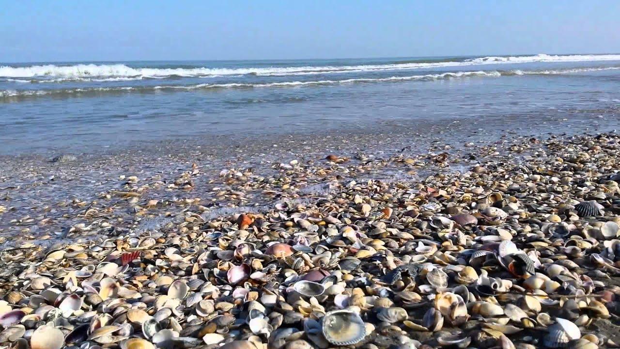 Milano marittima spiaggia delle conchiglie youtube for Lago con spiaggia vicino a milano