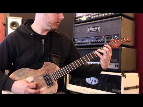 "Cattle Decapitation ""Mammals in Babylon"" play through"