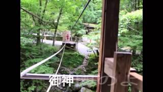 祖谷温泉郷から車で約1時間半、奥祖谷かずら橋の野猿に乗ってみました。...