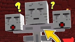 THE CRAZIEST MINECRAFT WITHER BOSSES EVER!!