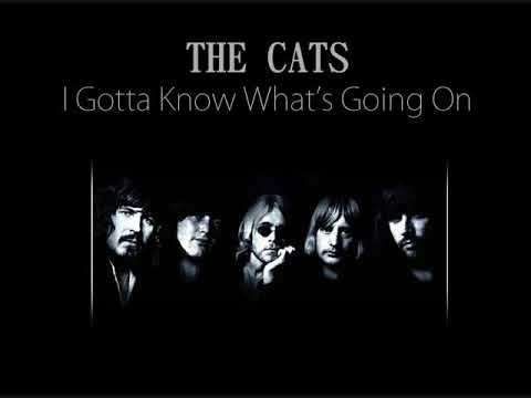 The Cats - I Gotta Know What's Going On