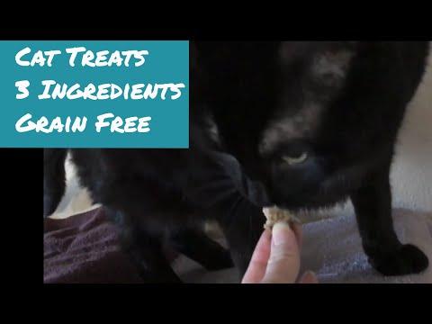 Homemade Cat Treats 3 Ingredients - Grain Free
