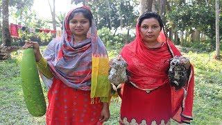 Village Style Cooking Chicken And Bottle Gourd Curry Recipe / Cooking Chicken and Bottle Gourd Curry