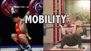 MOBILITY: What works?