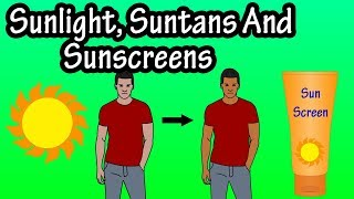 Sunlight Suntans And Sunscreens - What Is A Suntan - What  Does The Sun Do To The Skin