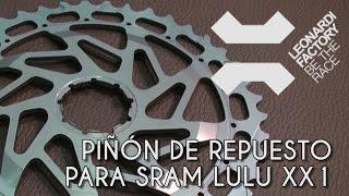 Piñón de repuesto para SRAM Lulu XX1