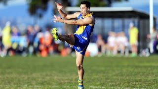 Michael Gibbons vs Footscray