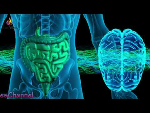 Stomach Colon & Digestion Disorder Treatment ➤ Theta Binaural Beats ➤ Sound Therapy #GV350
