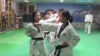 남창도장 수련의 비밀-한번겨루기 - NAMCHANG DOJANG -HANBON KYORUKI TECHNIQUES (I)