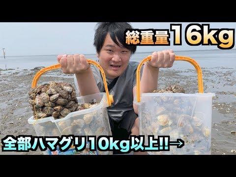 総重量16kg!!潮干狩りで大量のハマグリを獲る方法教えます!!!