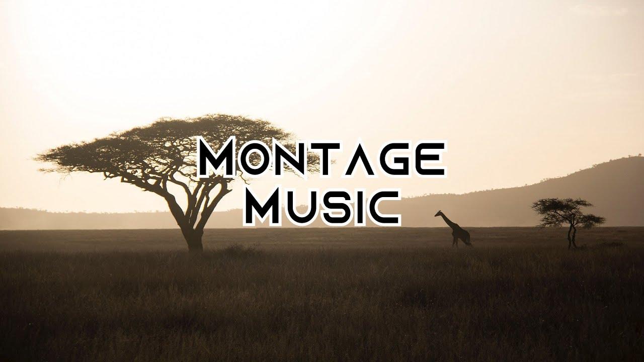 Safari - Dizaro (Montage Music for Vlog)