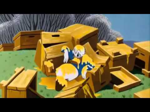 Donald Duck Cartoon !!! SPECIAL COLLECTION of Humphrey Bear and Donald Duck!!!