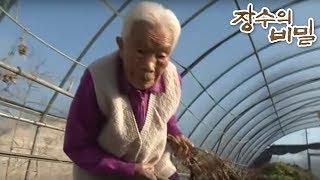 장수의 비밀 - 92세 일쟁이 엄마, 순임 할머니_#001