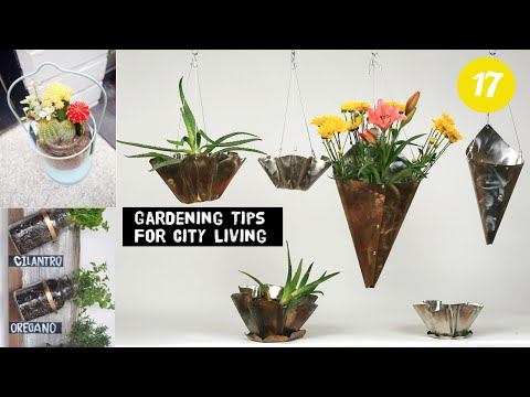 17 Clever City Gardening ideas