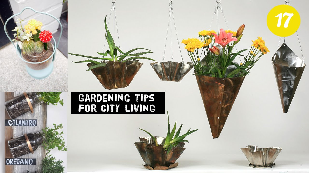 17 Clever City Gardening ideas - YouTube