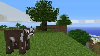 Spider's Rampage (Minecraft Animation)
