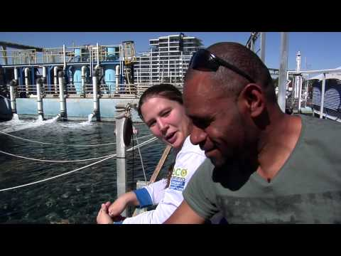 My Australia: Series 3 - Episode 1