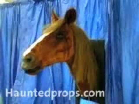 HAUNTEDPROPS.COM TALKING HORSE